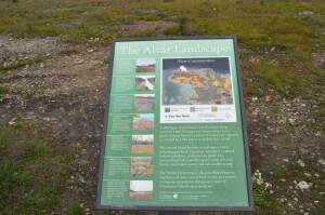 Alvar Maxton Plains Drummond Island MI