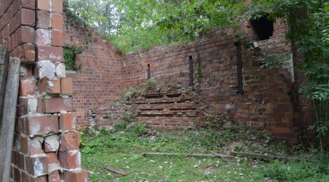 Explore the Ruins and Trails at Lincoln Brick Park in Eaton County (Photo Gallery)