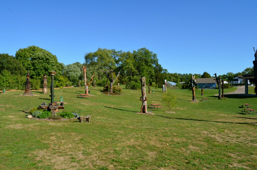 Fantasy Forest Leila Arboretum Feature Photo Battle Creek