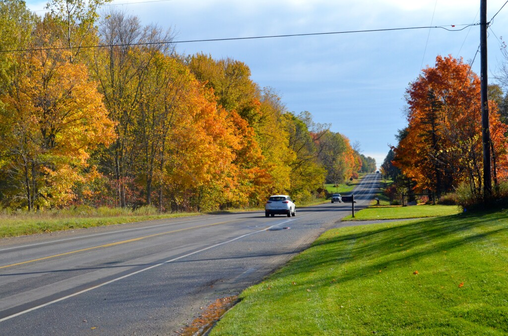 Kent County Fall Color Tour 100th St. Eastbound