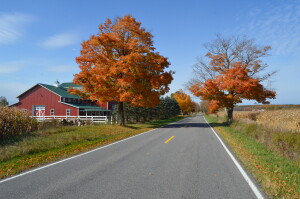 Kent County Fall Color Tour Alto Farm