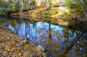 Kent County Fall Color Tour Coldwater River Park