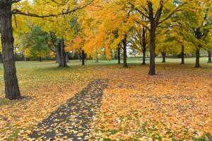Kent County Fall Color Tour Douglas Walker Park