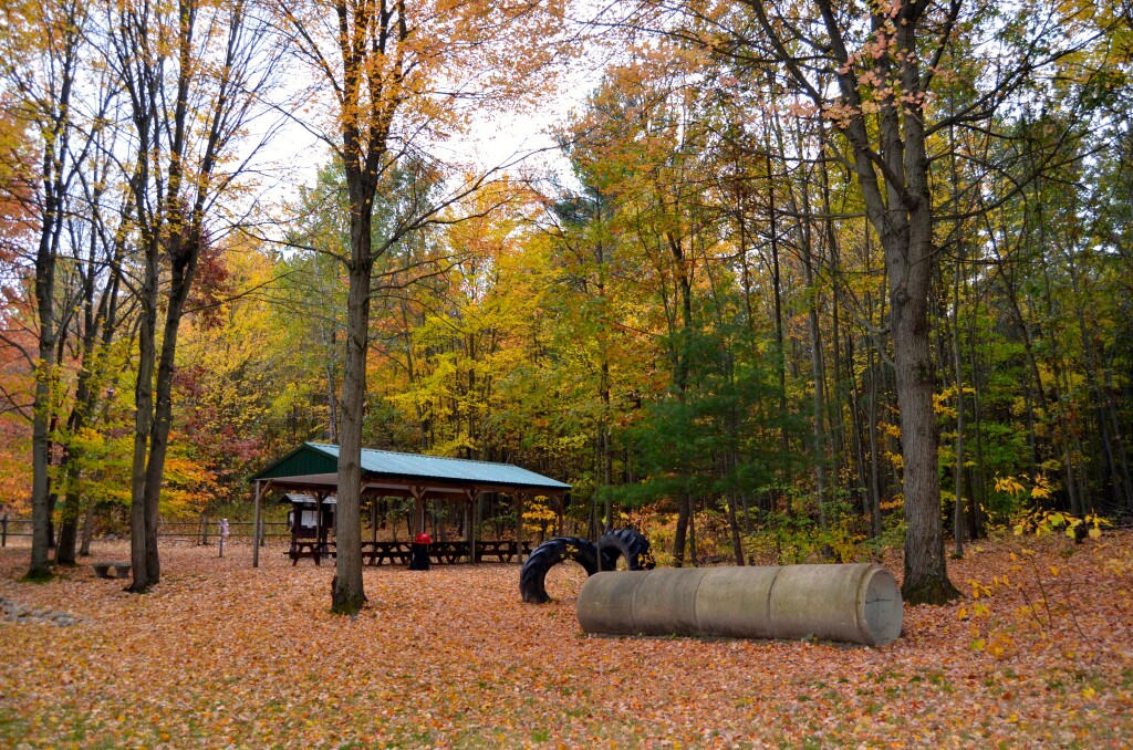 Kent County Fall Color Tour Ensley Township Nature Preserve