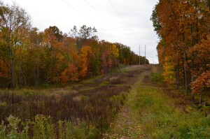 Kent County Fall Color Tour Seidman Park Trails