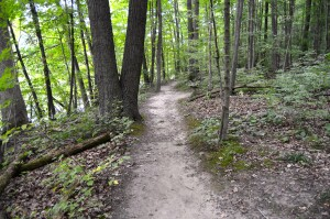 Lincoln Brick Park Hiking Trail Michigan