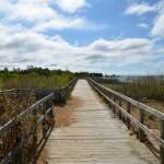 Michigan Trail Tuesday: Manistique Boardwalk