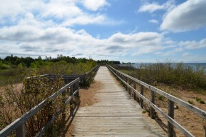 Manistique Boardwalk Trail Feature Photo Michigan