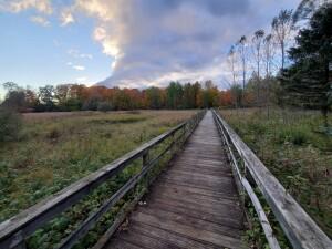 Reed City Rambadt Park Wooden Walkway Michigan