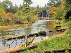 Pine River Michigan Kayak Fall