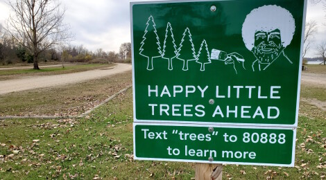 Michigan's Run for the Trees: Happy Little 5K Will Return in 2021