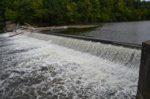 Fitzgerald Park Grand Ledge River Dam Fish Ladder