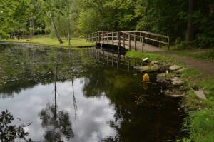 Fitzgerald Park Island Trail Grand Ledge Michigan
