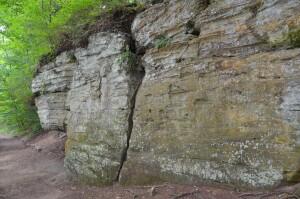 Fitzgerald Park Ledges Trail Michigan