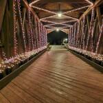 Get In The Holiday Spirit At Ada Village Winter Wonderland