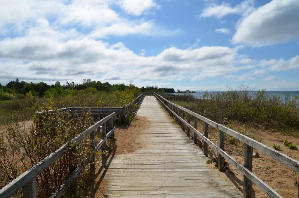 Manistique Boardwalk trail, June