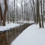 12 Great Kent County Parks for Winter Recreation