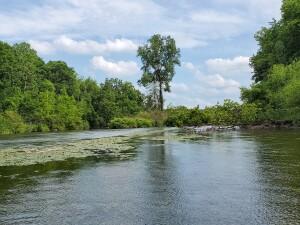 Flat River kayak final stretch