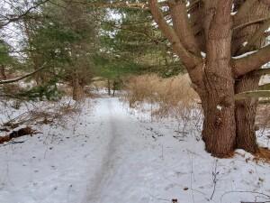 Luton Park Rockford Winter Recreation