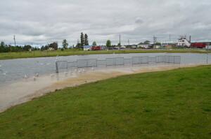 Rotary Island Park Sault Ste. Marie Fishing Area