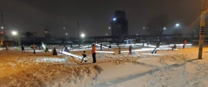 Impulse on Monroe Grand Rapids World of Winter