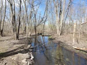 Kent County Parks Donald Lamoreaux Park Hiking Trail