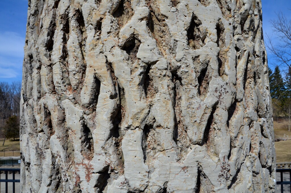McCourtie Park Michigan Cement Tree Detail
