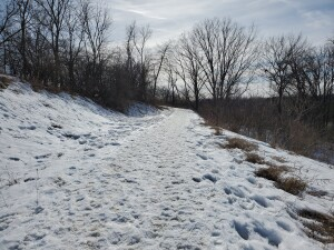 Eastmanville Farm Snow Covered Trail Ottawa County Parks
