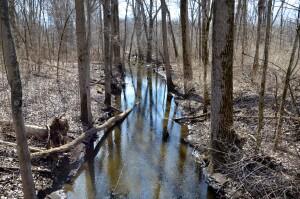 Meridian Baseline State Park Creek Trail