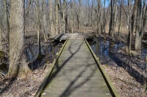 Meridian Baseline State Park Trail Michigan