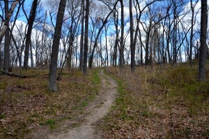 Wege Foundation Natural Area Hiking Trails Lowell