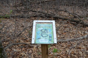 Wege Foundation Natural Area Lowell Garter Snake Infoirmation Sign