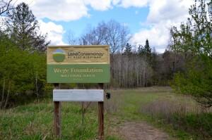 Wege Foundation Natural Area Michigan Nature Conservancy