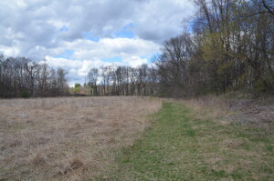 Wege Foundation Natural Area Trail Old Field Lowell