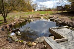 Wege Foundation Natural Area Wittenbach Center Pond