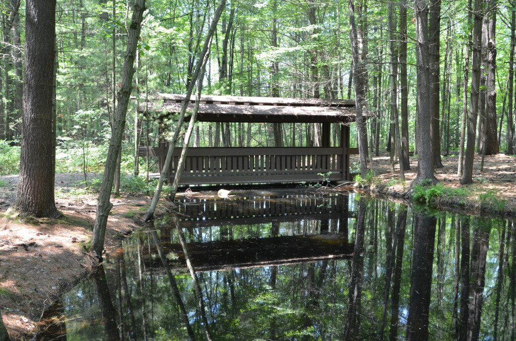Dow Gardens Covered Bridge Whiting Forest