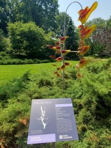 Dow Gardens Midland Michigan Heliconia Art Sculpture