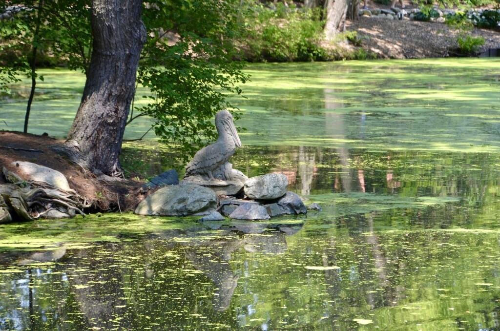Dow Gardens Midland Michigan Pelican Sculpture Pond