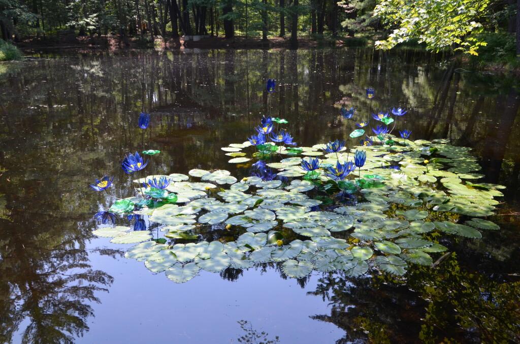 Dow Gardens Midland Michigan Pond Art Whiting Forest
