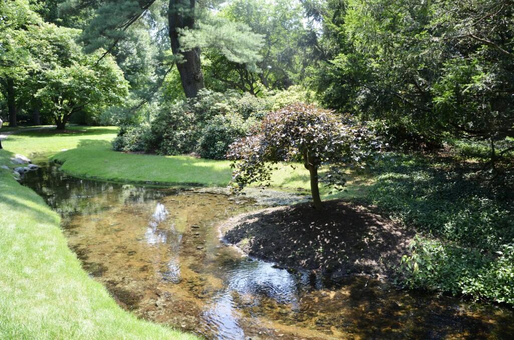 Dow Gardens Midland Michigan Stream Pathway