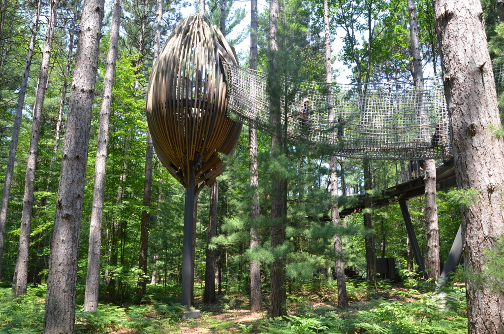 Dow Gardens Midland Michigan Whiting Forest Canopy Pods
