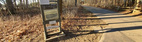 Celery Flats Historical Area: Dive in to World War I History and More on the Portage Creek Bicentennial Park Trail