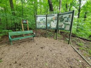 Warren Woods State Park Hiking Trail Signs Michigan