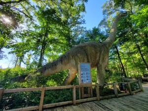 Binder Park Zoo Brachiosaurus Zoorassic Park