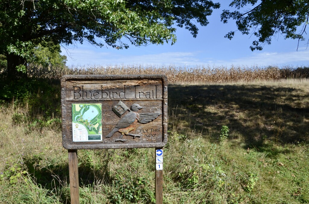 Kellogg Bird Sanctuary Michigan Blue Bird Trail