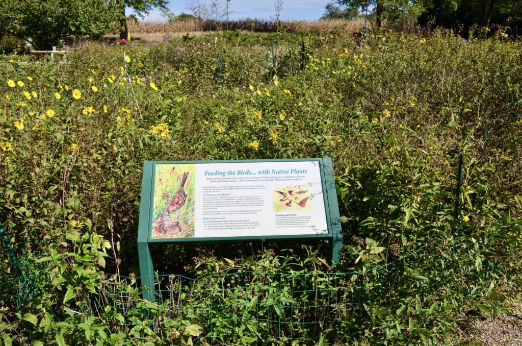 Kellogg Bird Sanctuary Michigan Butterfly Wildflower Garden