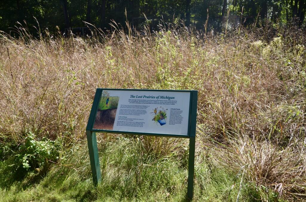Kellogg Bird Sanctuary Prairie Restoration