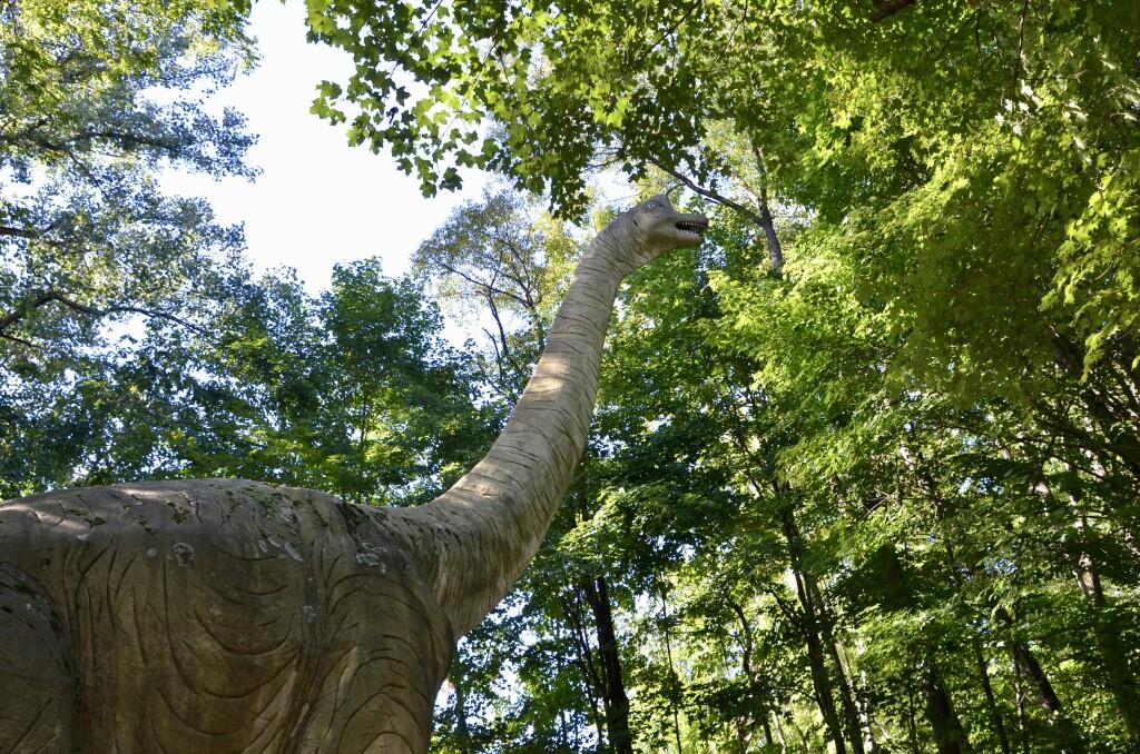Zoorassic Park Binder Park Zoo Brachiosaurus