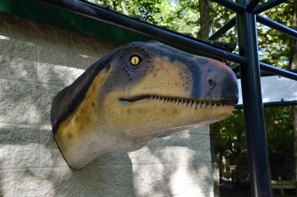 Zoorassic Park Binder Park Zoo Dinosaur Head