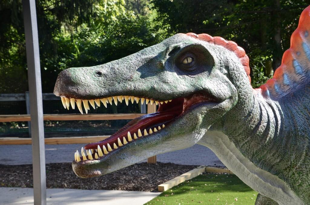Zoorassic Park Binder Park Zoo Dinosaur Teeth
